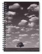 Lone Tree Morning In B And W Spiral Notebook