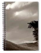 Lone Tree On A New Zealand Hillside Spiral Notebook