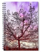 Lone Tree On The Hill Spiral Notebook