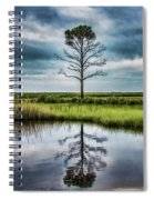 Lone Tree Reflected Spiral Notebook