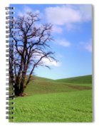 Lone Tree - Rolling Hills - Summer Sky Spiral Notebook