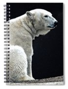 Lonely Spiral Notebook