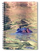 Lonely Hippo Spiral Notebook
