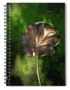 Lonely Leaf On Moss Spiral Notebook