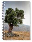 Lonely Olive Tree And Stormy Cloudy Sky Spiral Notebook
