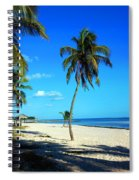 Lonely Palm Spiral Notebook
