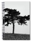 Lonely Pine Spiral Notebook