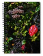 Lonely Red Leaf Spiral Notebook