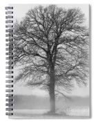 Lonely Winter Tree Spiral Notebook