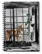 Lonely Wolf Spiral Notebook