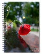 Lonesome Spiral Notebook