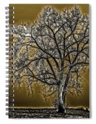 Lonesome Tree Spiral Notebook