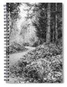 Long And Winding Path Spiral Notebook