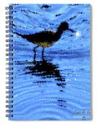 Long-billed Diwitcher Spiral Notebook
