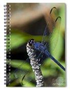 Long Blue Spiral Notebook