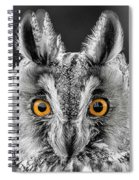 Long Eared Owl 2 Spiral Notebook