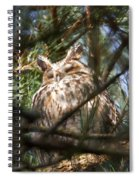 Long-eared Owl Spiral Notebook