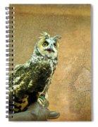 Long Eared Owl Spiral Notebook