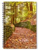 Long Fall Walk  Spiral Notebook