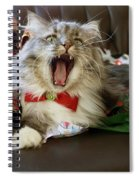 Long Haired Grey And White A Cat Yawns Amid Christmas Wrapping Paper Spiral Notebook