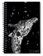 Long Reach Spiral Notebook