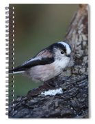 Long-tailed Tit Spiral Notebook