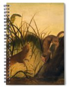 Long - Tailed Weasel Spiral Notebook