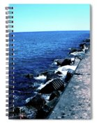 Long Thought Spiral Notebook
