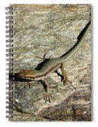 Long Toe Spiral Notebook
