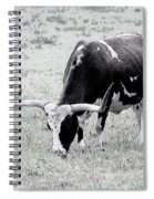 Longhorn Sketch Spiral Notebook