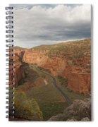 Longs Canyon 0145 Spiral Notebook