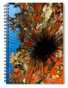 Longspined Sea Urchin Spiral Notebook
