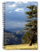 Lonly Tree Spiral Notebook
