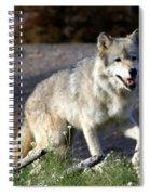 Lonly Wolf Spiral Notebook