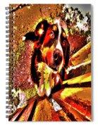Lonnie, 2016 Poster Effec 1a Spiral Notebook