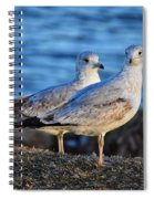 Look At Us Spiral Notebook