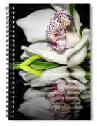 Look Beyond The Imperfections Spiral Notebook