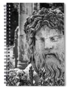 Look From The Past Spiral Notebook