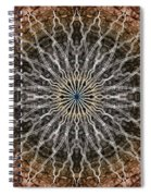 Look Into The Light Spiral Notebook