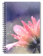 Look Toward The Shy I Of 3 Spiral Notebook