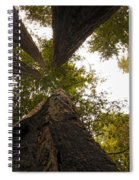 Look Up Way Up Spiral Notebook