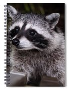 Look Who Came For Dinner Spiral Notebook
