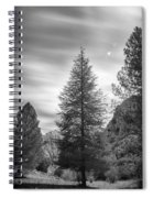 Looking For The Sky Into The Woods Spiral Notebook