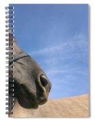 Looking Behind Spiral Notebook