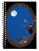 Looking Beyond Spiral Notebook