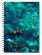 Looking Down At Shellow Water Spiral Notebook