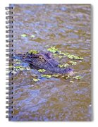 Looking For A Hand Out Spiral Notebook