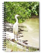 Looking For Lunch Gp Spiral Notebook