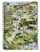 Looking For Lunch Spiral Notebook