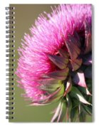 Looking For Sun Spiral Notebook